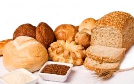Healthy whole grain bread variety.