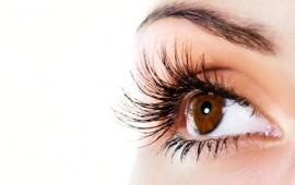 woman-brown-eye